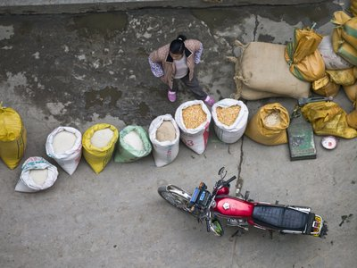 Guangxi Province, China, Elevated view of woman selling wheat in market Fine Art Print by Assaf Frank
