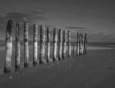 Groynes at ast head beach, West Susex coast Fine Art Print by Assaf Frank