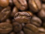 Coffee Beans Wall Art & Canvas Prints by Max Ferguson