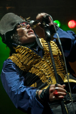 Adam Ant by Cristina Massei - print