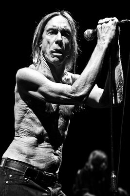 Iggy Pop and The Stooges (1) by Karen Toftera - print