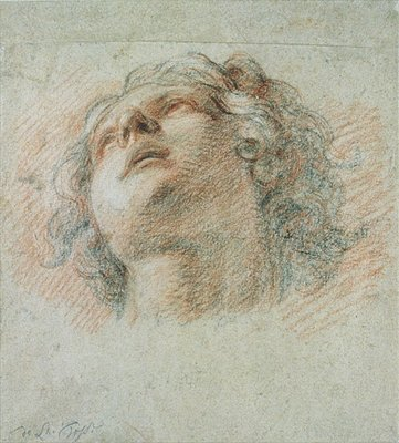 Head of a Youth, seen from below Wall Art & Canvas Prints by Charles de la Fosse