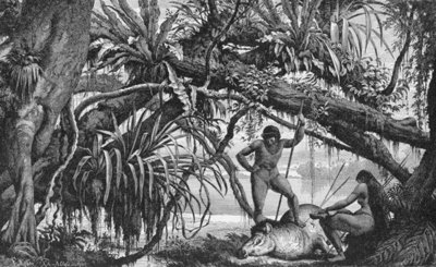 Caripuna Indians with tapir, from 'The Amazon and Madeira Rivers', by Franz Keller, 1874 (engraving) Fine Art Print by American School