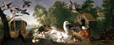 Ducks and Birds in a landscape, 18th century Postcards, Greetings Cards, Art Prints, Canvas, Framed Pictures & Wall Art by Pieter Casteels