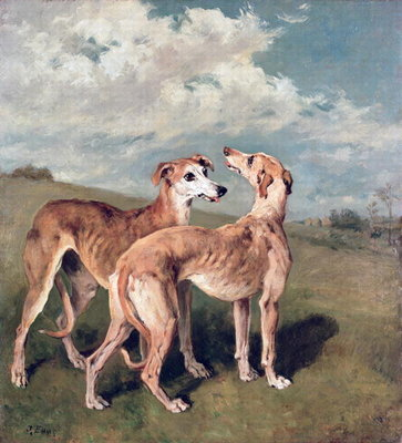 Greyhounds (oil on canvas) Postcards, Greetings Cards, Art Prints, Canvas, Framed Pictures, T-shirts & Wall Art by John Emms