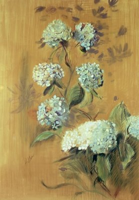 Hydrangeas Fine Art Print by Paul Cesar Helleu