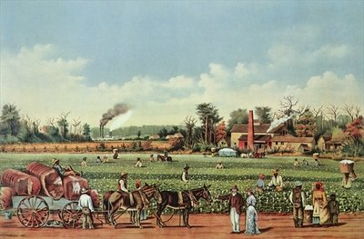 A Cotton Plantation on the Mississippi - the Harvest, engraved by Currier and Ives, 1884 (colour litho) Fine Art Print by William Aiken Walker