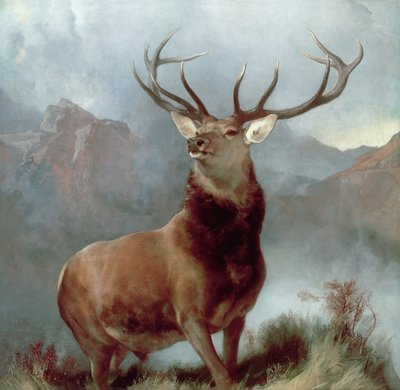 Monarch of the Glen, 1851 Fine Art Print by Sir Edwin Landseer