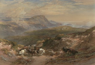 Scene in the Highlands, 19th century Postcards, Greetings Cards, Art Prints, Canvas, Framed Pictures, T-shirts & Wall Art by William Leighton Leitch