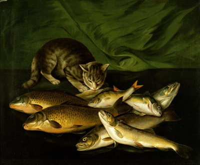A Cat with Trout, Perch and Carp on a Ledge Wall Art & Canvas Prints by Stephen Elmer