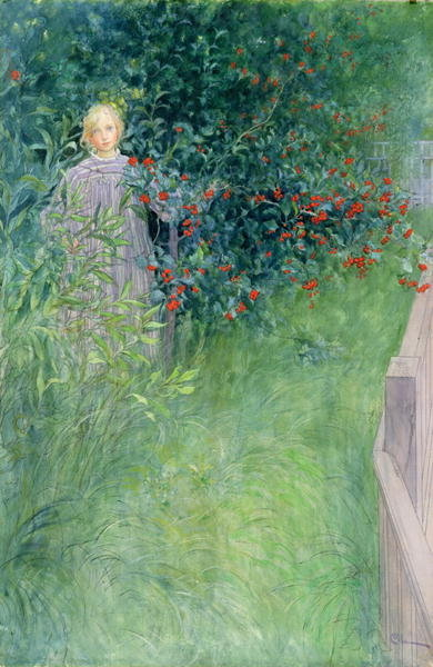 In the Holly Hedge Fine Art Print by Carl Larsson