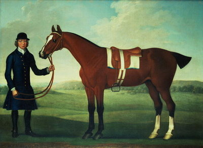 A Bay Hunter Held by a Groom Fine Art Print by James Seymour