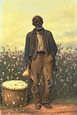 The Old Cotton Picker Fine Art Print by William Aiken Walker