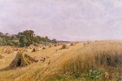 Cornfield Harvest by Edward Wilkins Waite - print