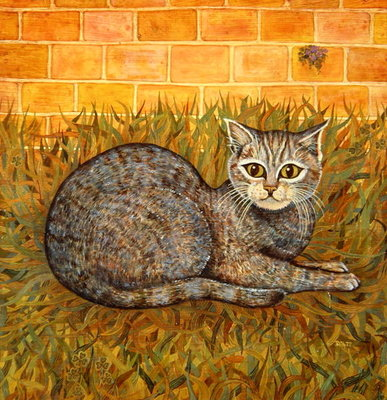 The Kitten Wall Art & Canvas Prints by Ditz