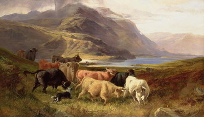 Highland Cattle with a Collie Poster Art Print by Joseph Adam