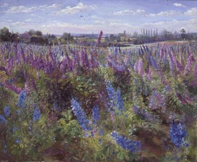 Delphinium Field and Church Wall Art & Canvas Prints by Timothy Easton