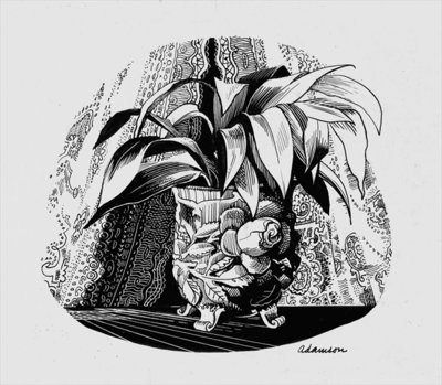 Aspidistra in a Bowl, 1950s Wall Art & Canvas Prints by George Adamson