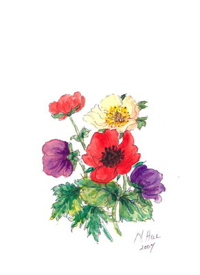 Anemones, 2007 Fine Art Print by Nell Hill