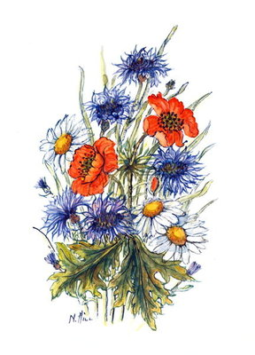 Cornflower, Poppy and Ox-eye Daisy Fine Art Print by Nell Hill