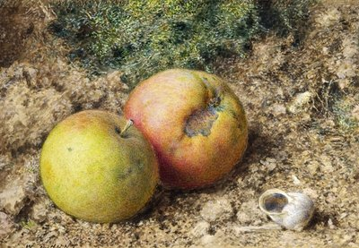 Still life with two apples and a snail shell Fine Art Print by William Henry Hunt