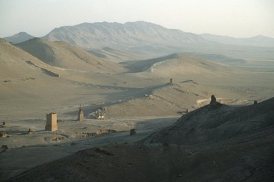 The Valley of the Tombs, or Western Necropolis, showing the remains of the Palmyran Tower Tombs Wall Art & Canvas Prints by Anonymous