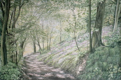 Spring in Pembrokeshire Fine Art Print by Jane Carpanini