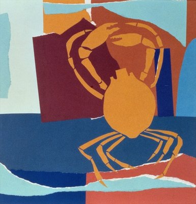 Spider Crab Fine Art Print by John Wallington