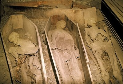 Mummified Bodies (photo) Fine Art Print by .
