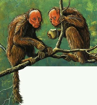 Strange Monkeys Fine Art Print by Eric Tansley