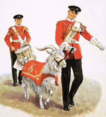 An army mascot goat Fine Art Print by Clive Uptton