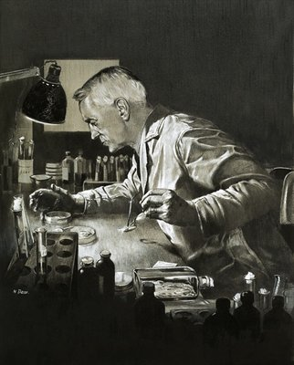 Alexander Fleming and the discovery of penicillin Fine Art Print by Neville Dear