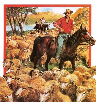 Australian sheep farmer Fine Art Print by Clive Uptton
