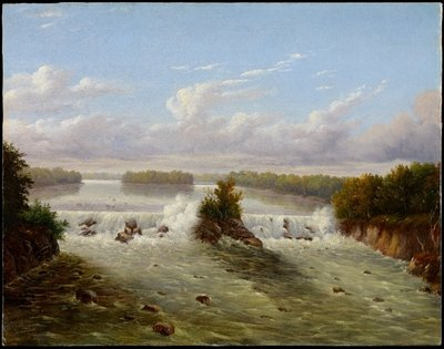 The Falls of St. Anthony, 1848 (oil on panel) Wall Art & Canvas Prints by Captain Seth Eastman