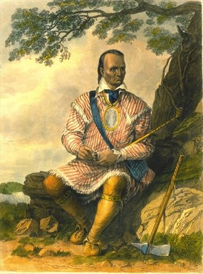 Red Jacket, Chief of the Senecas, 1853 Wall Art & Canvas Prints by Captain Seth Eastman