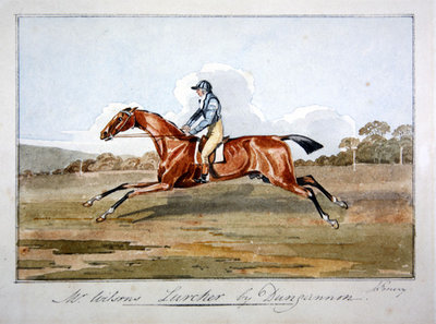 Mr Wilson's 'Lurcher' by Dungannon, 1808 Wall Art & Canvas Prints by John Emery