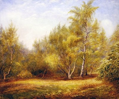 Epping Forest near Buckhurst Hill Wall Art & Canvas Prints by Frederick Henry Evans