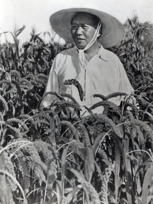 Mao Tse-tung during an inspection tour of Honan Province, 1958 Fine Art Print by Chinese Photographer