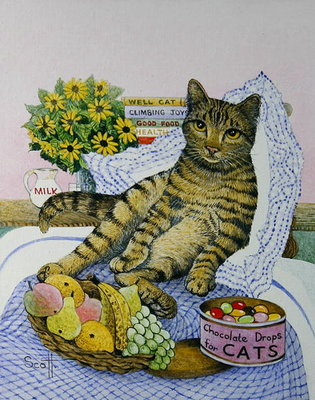 A Purrfect Place Fine Art Print by Pat Scott