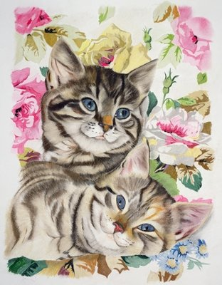 Two kittens Fine Art Print by Anne Robinson