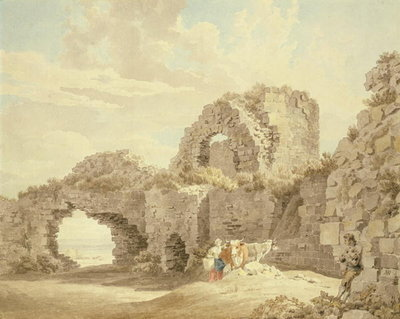 Ruins of Pevensey Castle Wall Art & Canvas Prints by Michael Rooker