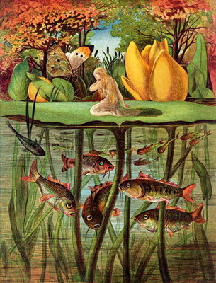 Tommelise very desolate on the water lily leaf, in 'Thumbkinetta' from Hans Christian Andersen's Fairy Tales, 1872 Poster Art Print by Eleanor Vere Boyle