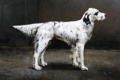 Portrait of a dog, 1885 Wall Art & Canvas Prints by Charles van den Eycken