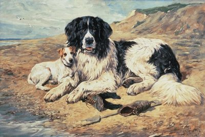 Dogs Watching Bathers, 1900 (oil on canvas) Fine Art Print by John Emms