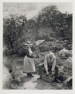 An Old Man and his Daughter Gardening (b&w photo) Postcards, Greetings Cards, Art Prints, Canvas, Framed Pictures & Wall Art by Peter Henry Emerson