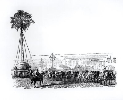A palm tree being transported to Hyde Park for the Great Exhibition, London, 1851 Fine Art Print by English School