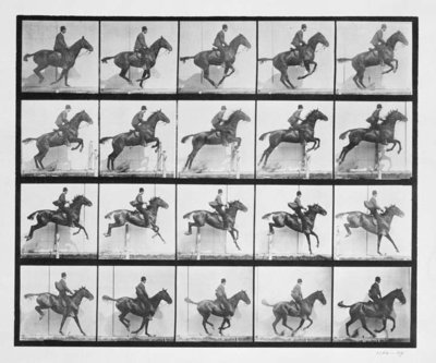 Man and horse jumping a fence, plate 640 from 'Animal Locomotion', 1887 Fine Art Print by Eadweard Muybridge