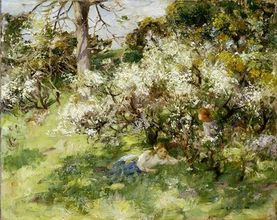Sloe Blossom Wall Art & Canvas Prints by William Stewart MacGeorge