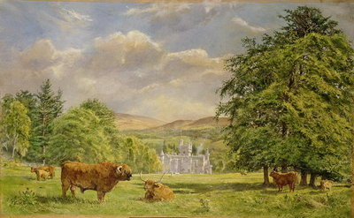 Bulls at Balmoral, 1988 Fine Art Print by Tim Scott Bolton