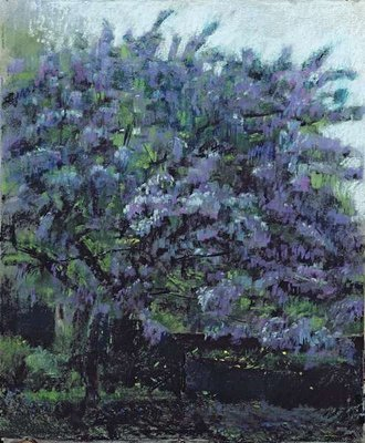 Ceanothus Tree No.1, 2004 Postcards, Greetings Cards, Art Prints, Canvas, Framed Pictures, T-shirts & Wall Art by Ben Henriques